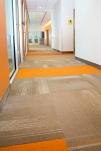 Accent Carpet